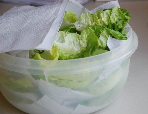conservar alface na geladeira