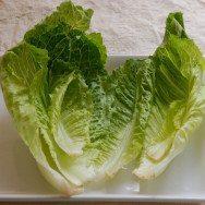Salada de alface construida