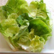 receita de salada de folhas