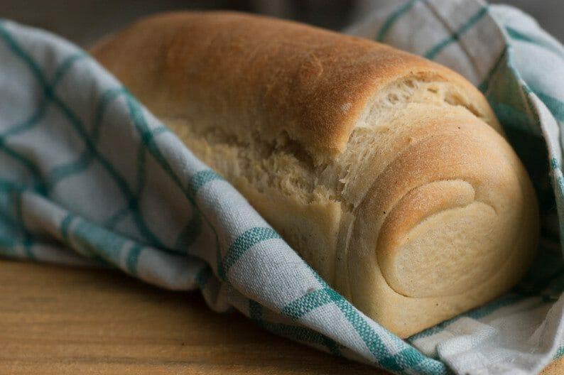 receita fácil de pão vegetariano (pão de azeite)