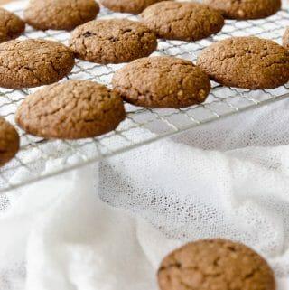 biscoitos de aveia e mel caseiros