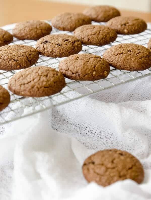 biscoitos de aveia e mel caseiros - receitas para a lancheira