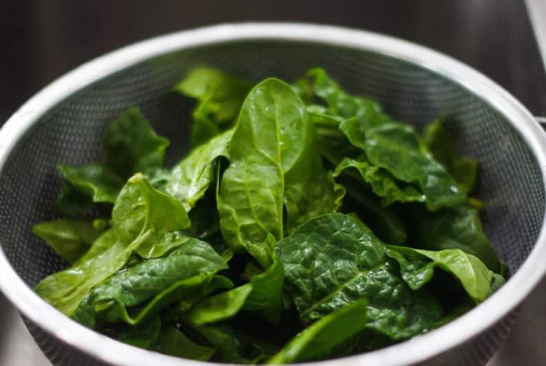 espinafre é um ótimo ingrediente – como preparar papinhas nutritivas para o seu bebê