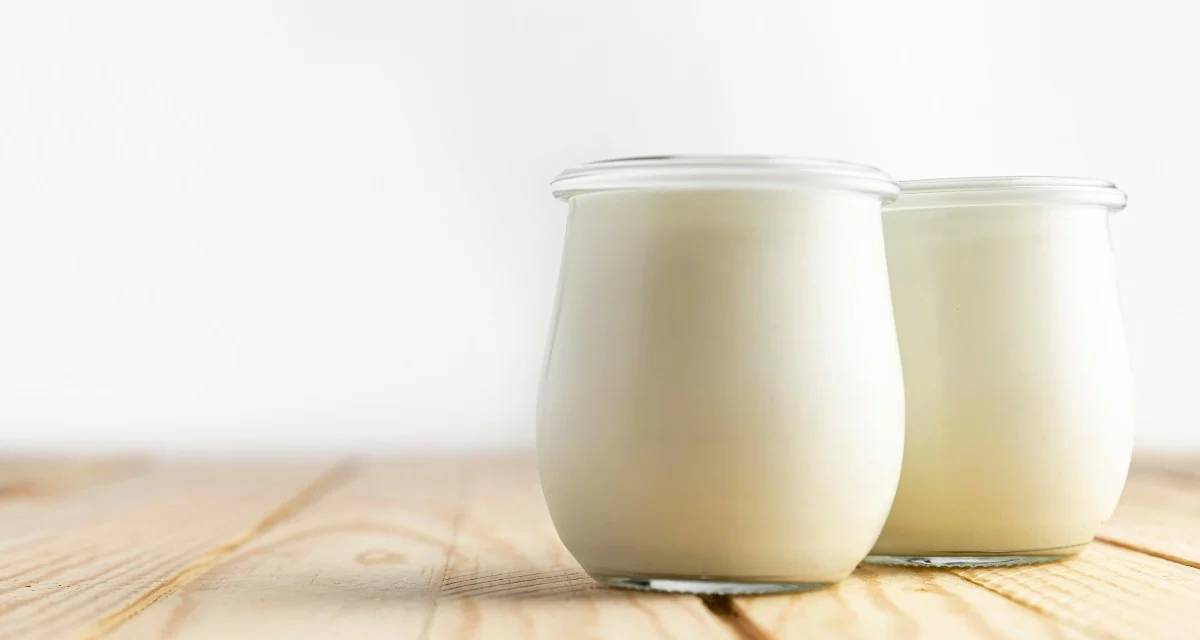 iogurte zero açúcar